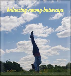 Julia balancing